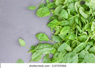 Many Fresh spinach leaves. Vitamins and health in food. Free space for text. Copy space.