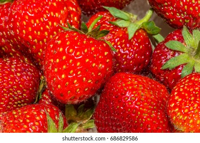 Many fresh strawberries macro