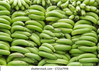 many green bananas.