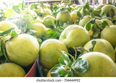 many green pomelo.