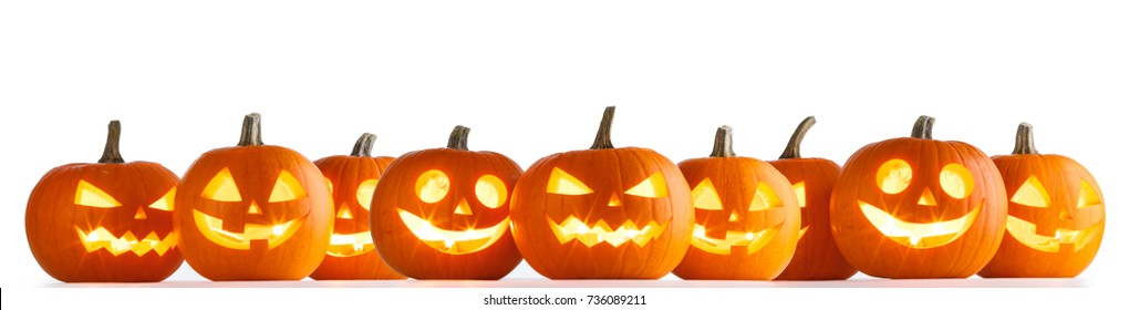 Many Halloween Pumpkins in a row isolated on white background