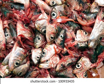 Many heads of sardines on a pile as a frequent scene in fish markets.