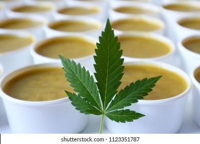 Many hemp salves balms lotions with marijuana leaf, healing marijuana photo