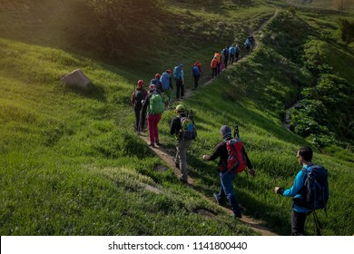 Many hikers are climbing the grassy path. Springtime in Iran.