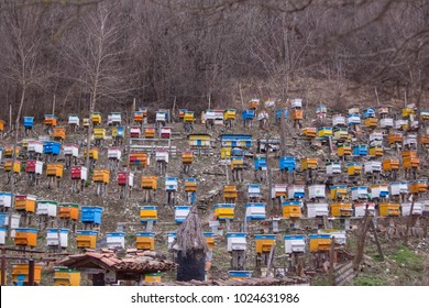 Many hives on a hill in a village, Bulgaria.