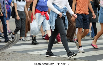 many legs of people crossing the pedestrian crossing in the busy street of the metropolis in the summer