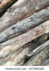 many log laid on the floor with texture of wood