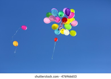 many multicolored balloons flying in the blue sky