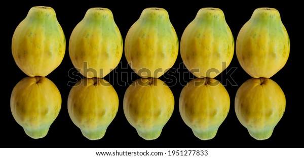 many-papayas-line-reflection-on-600w-195