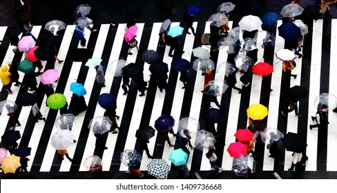 Many people walking with colorful umbrella in the famous big Shibuya crossing road in a raining day.
