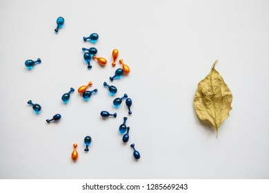 Many pills or capsules with hyaluronic acid and q10 or coenzyme. Caring for skin health. Conceptually, the autumn leaf means aging of the skin, and the capsules with the medicine mean anti-aging.