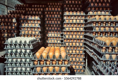 Egg Crate Images Stock Photos Vectors Shutterstock