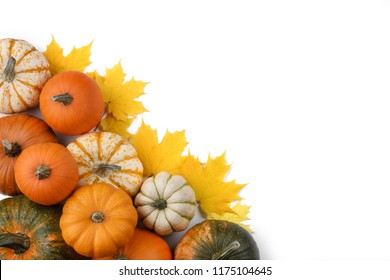 Many pumpkins and maple leaves isolated on white background , Halloween concept