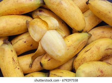 Many raw bananas as background