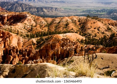 Many rolling hills and colors in Bryce Canyon National Park