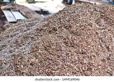 Many of shavings and sawdust from wood planer. Woodworking concept.