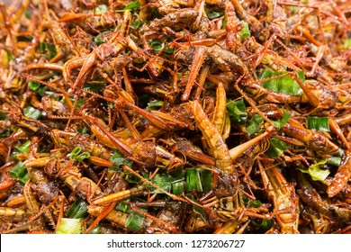 Many small fried insects at night market street food festival of Thailand.