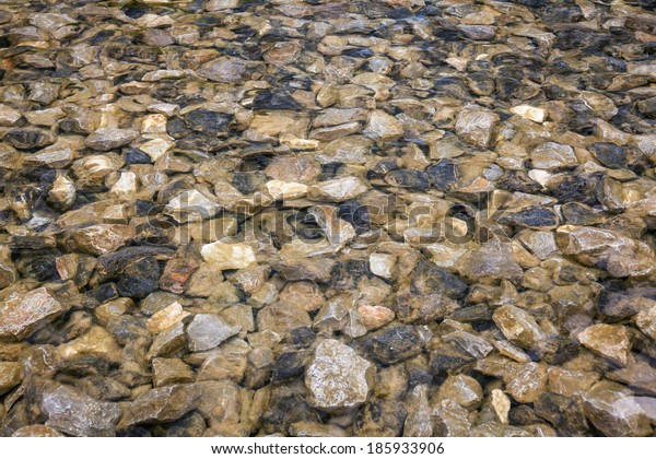 Many small stones under the water.
