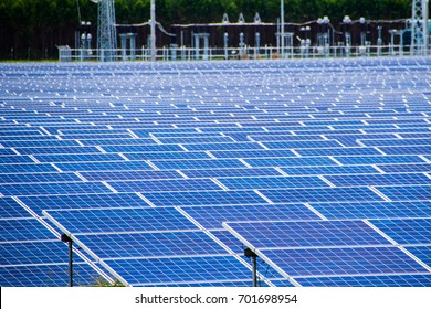 Many solar cells are installed in energy farms from Sun Yang. soft and select focus .