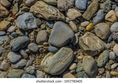 many stones in the sun from a dried brook while walking
