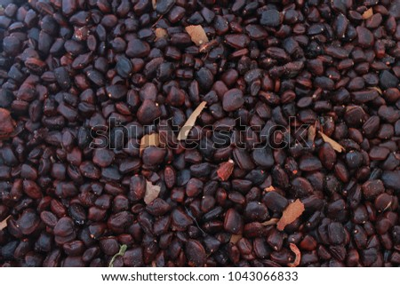 What Is Tamarind Seed Good For