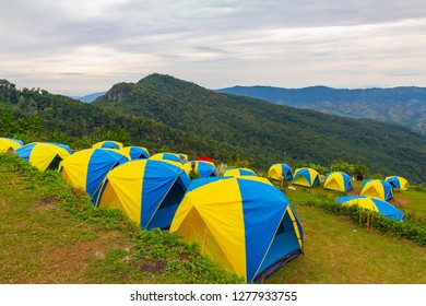 many tent is in camping zone