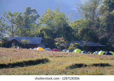 Many tents on a lawn, homestay and colorful tents, beautiful scenery and tranquility in the countryside, campsite at Doi Inthanon National Park