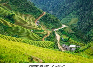 Many terraced rice fields with Hmong village in Sapa, Northern Vietnam. Sa Pa is a town in the Hoang Lien Son Mountains of northwestern Vietnam.