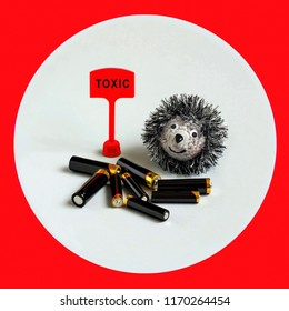 Many used alkaline batteries and toy hedgehog. Attention to problem of environmental pollution by toxic domestic waste. One battery kills hedgehog. Creative ecological concept. Minimal style