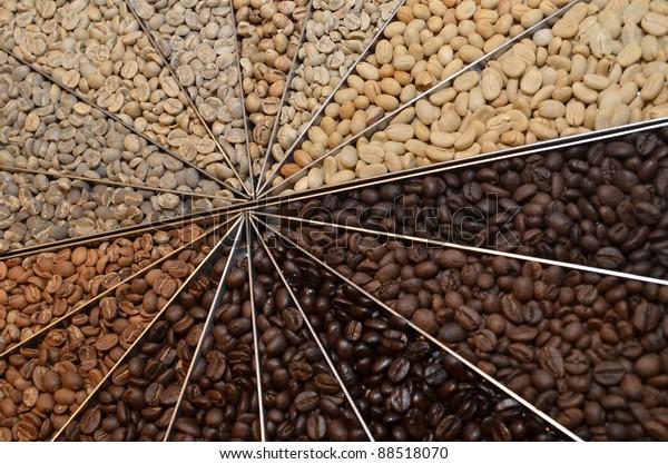 Many varieties of coffee beans
