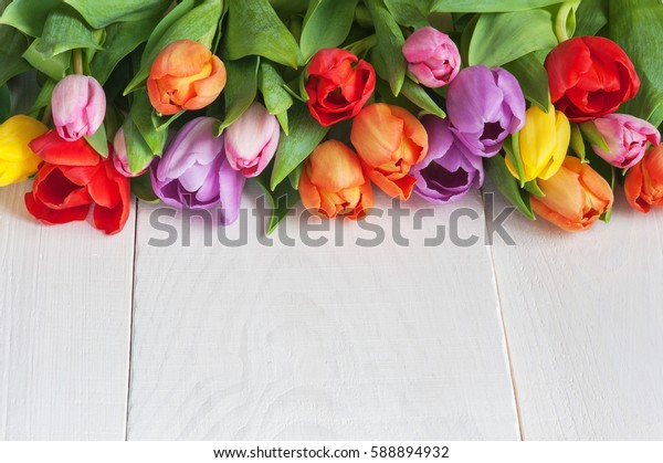 Many various tulips lie on the white wooden table