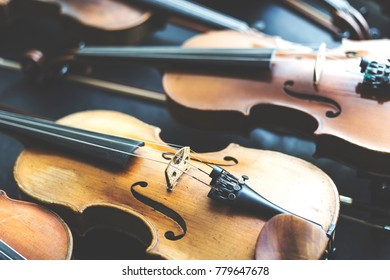 Many violins and violas next to each other.