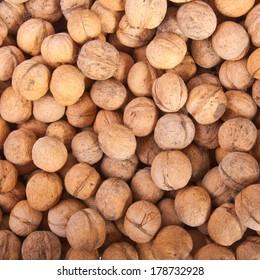 many walnuts background