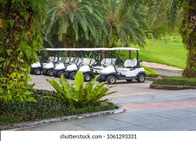 many white golf car on green palm trees background standing in straight diagonal lines near golf course outside. Thailand clubhouse cart concept
