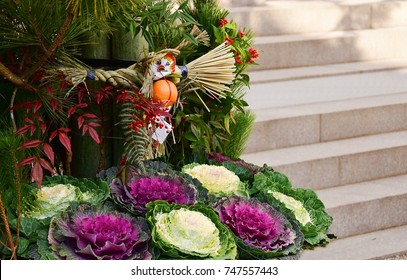 Many of white and purple decorative cabbages are planted in the pot of Japanese traditional celebrating and welcoming for new year called Kadomatsu with rock stairs background