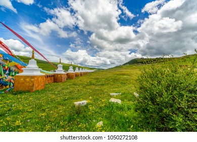 Many white stupa in the green grass, the famous Tibetan Buddhist monasteries in Ladakh, India, blue sky background