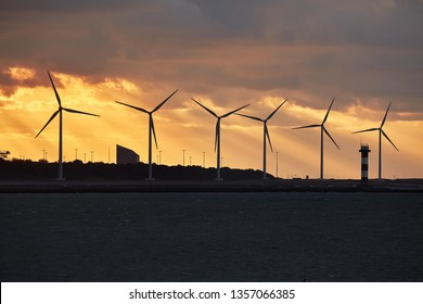 Many wind power turbines in twilight