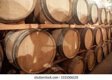 many wine barrels in the cellar