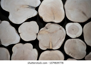 Many wood sections. Natural organic texture with cracked and rough surface. Flat wooden surface with annual rings.