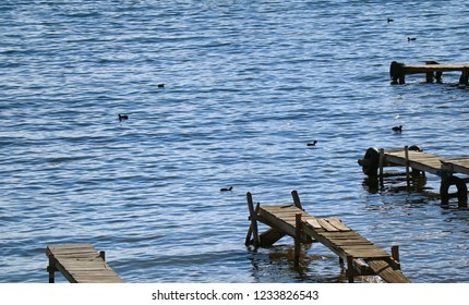 Many wooden dock and black waterbirds on the Lake Titicaca, the town of Copacabana, Bolivia