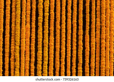 Many yellow flowers are knit to decorate a beautiful backdrop.