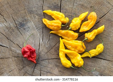 Many yellow hot peppers with a single red one on a wooden background viewed from the top.