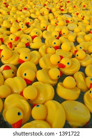 Many Yellow Rubber Ducks Floating in Water