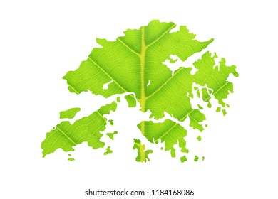 Map of Hong Kong made from green leaves