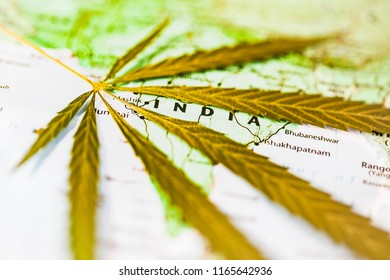 Map India cannabis marijuana leaves