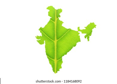 Map of India made from green leaves