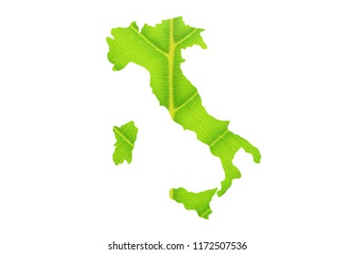 Map of Italy made from green leaves.