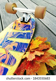 Maple leaves and the longboard