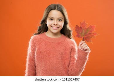 Maple syrup. Little child hold maple leaf. Small girl smiling with maple leaf. Maple syrup is often used as condiment for pancakes waffles oatmeal or porridge. Ingredient in baking and sweetener.