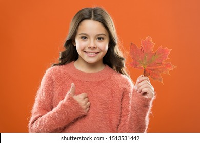 Maple syrup is often used as condiment for pancakes waffles oatmeal or porridge. Ingredient in baking and sweetener. Maple syrup. Little child hold maple leaf. Small girl smiling with maple leaf.